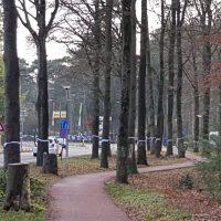 Beroepen bij Raad van State en rechtbank voor behoud bomen en beschermde dieren